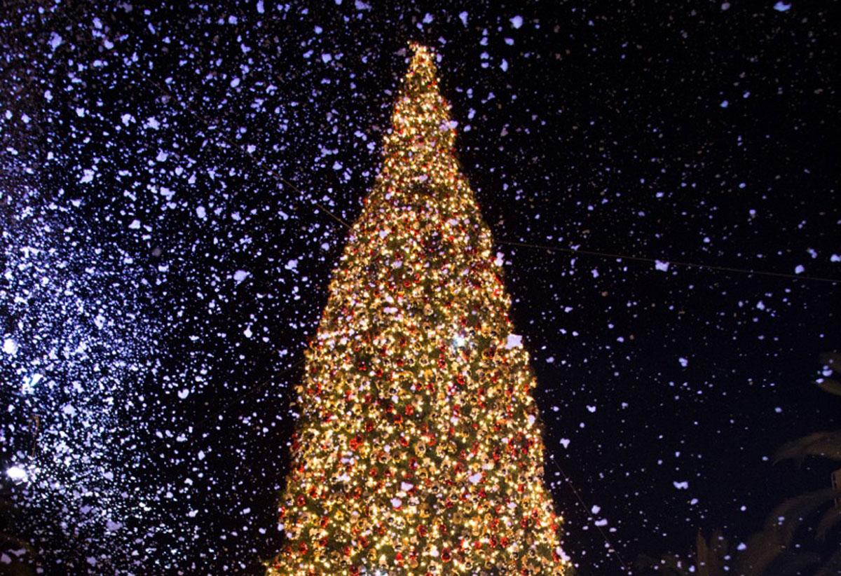 Fashion Island Tree Lighting Ceremony